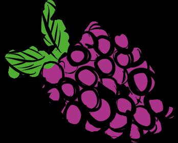 grapes purple green leaves fruit